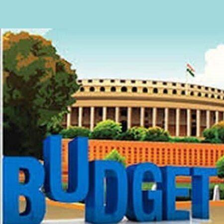 Budget and Survey – अर्थ संकल्प इकॉनॉमिक सर्वे